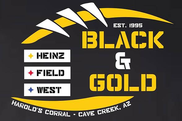 Heinz field west - black & gold - 2017